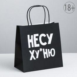 Пакет подарочный Несу Ху*ню, 22 х 22 х 11 см    3907834
